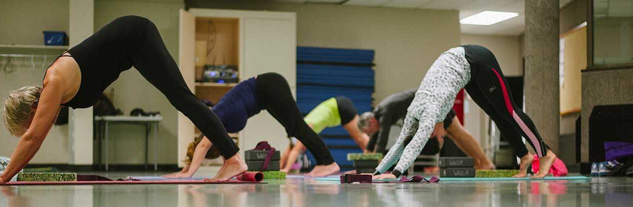 Yoga for Wrecks Classes on Thursdays and Saturdays